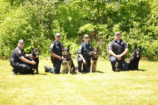 The Brimfield K-9 Corps, circa 2014