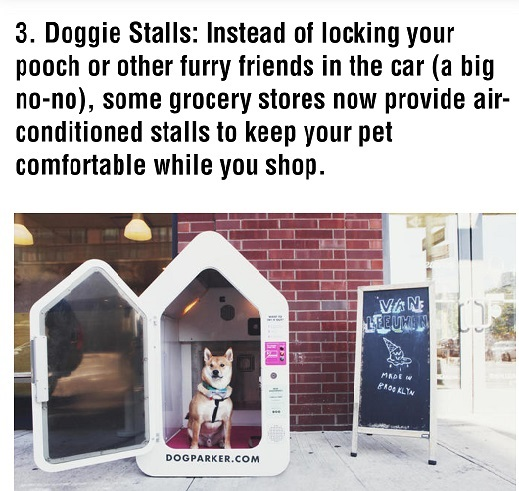 doggies stalls