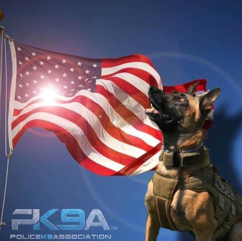 Photo from Police K-9 Association