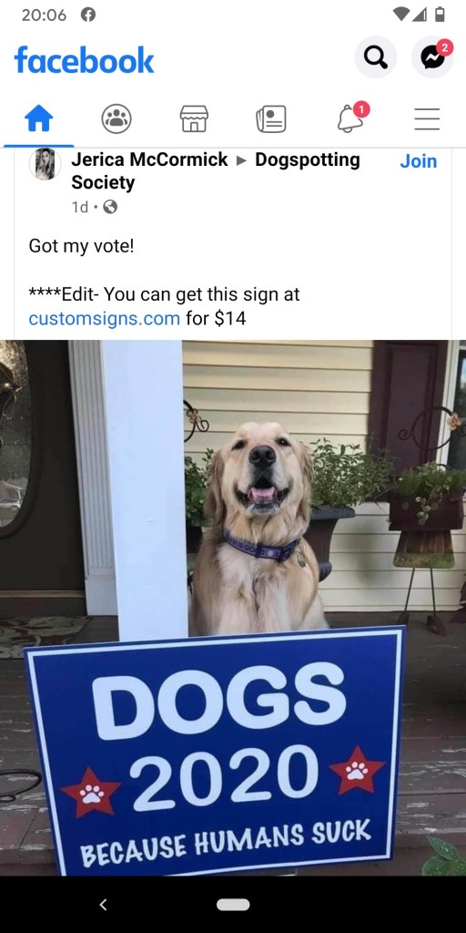 Dogs 2020