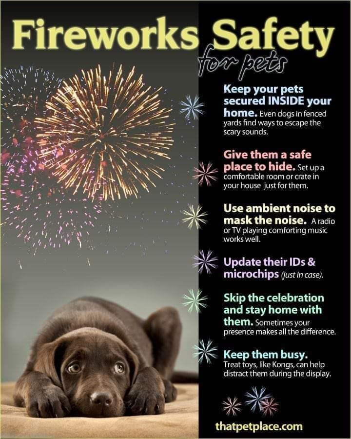 Graphic from ThatPetPlace.com