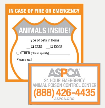 Image from ASPCA