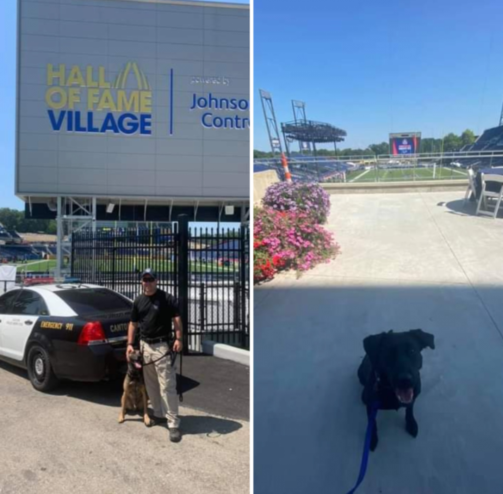 K-9s Conan (L) and Tucker (from Akron Children's Hospital)