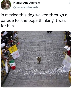 Pope Parade