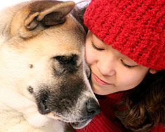 Akita dog and girl