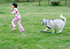 Child running from a dog