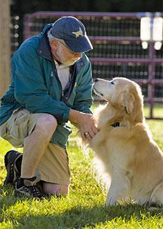 Man and Dog Paw Shake