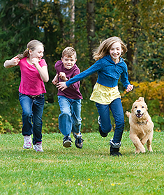 Kids running in park with dog
