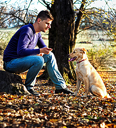 Man sitting in woods with dog practicing stay command